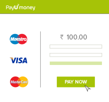 PayUmoney payment infographic